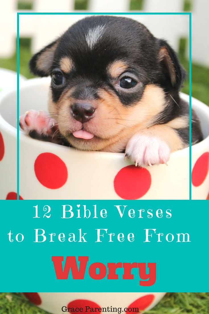 12 bible verses for worry