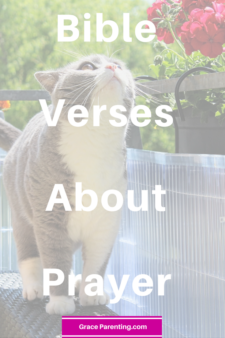 Bible Verse About Prayer